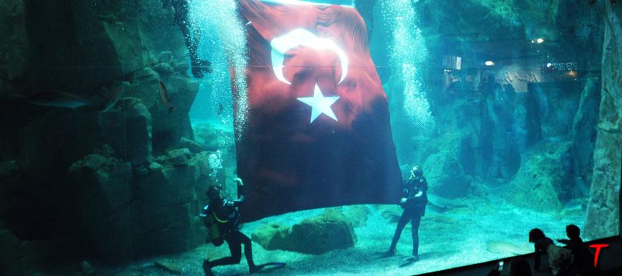istanbul-akvaryum-29ekim