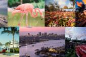 2015'in gözde seyahat noktaları